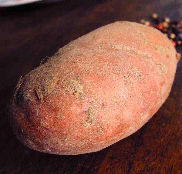 patata svezzamento