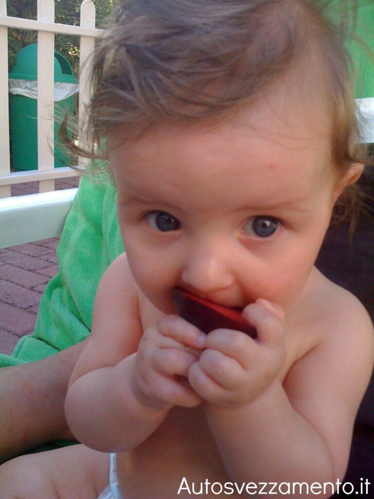 Bambino autosvezzato mangia la susina