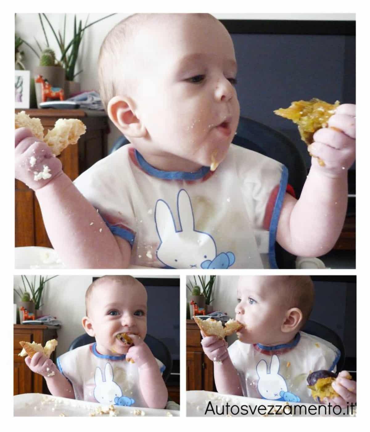 Bambina scegli cosa mangiare: prugna o pane; autosvezzamento