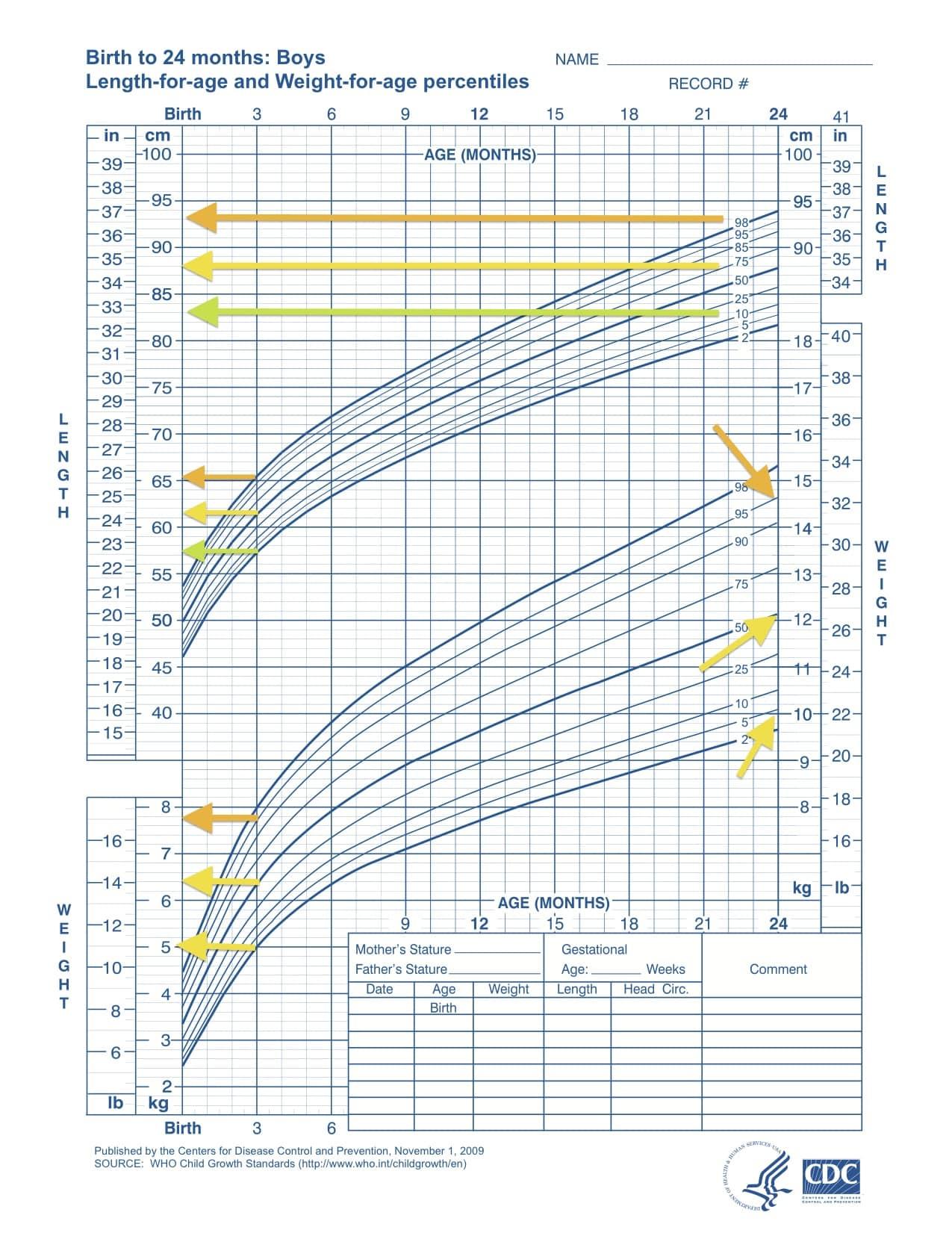 Curva di crescita OMS per bambini da 0 a 24 mesi
