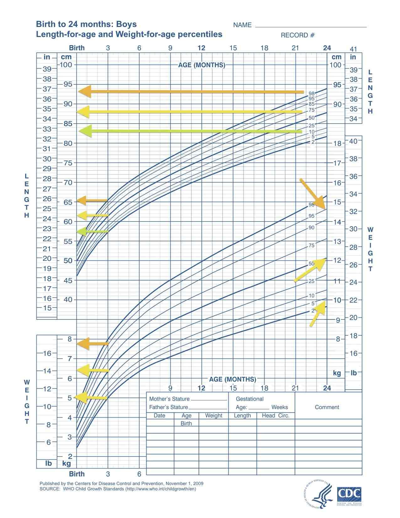 Curva di crescita OMS per bambini da 0 a 24 mesi.
