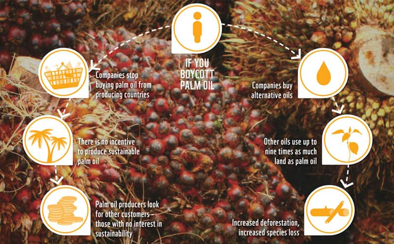 Boicottare olio palma