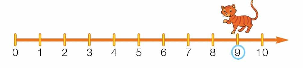 linea dei numeri metodo analogico